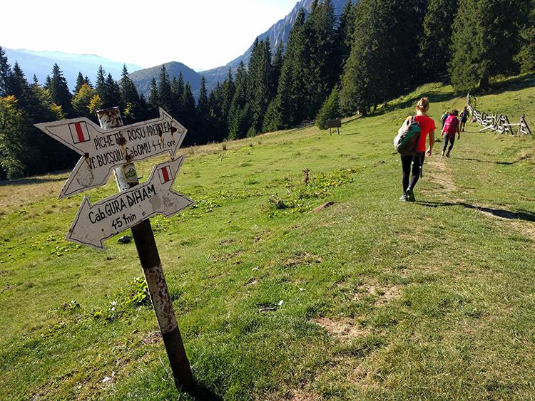 Trail blazing in Romania