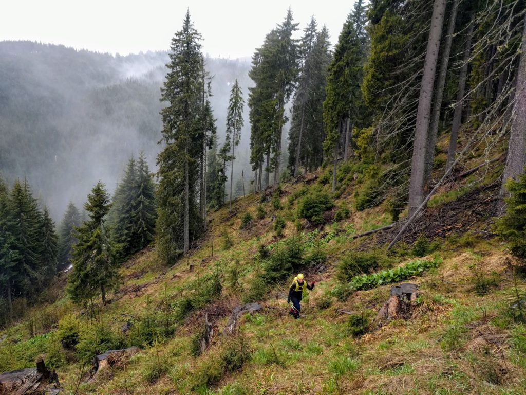 Hiking in the mist of morning in the Bucegi Mountains