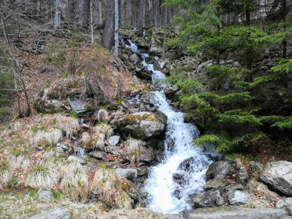 There are several small waterfalls on side of the road towards Cabana Buta