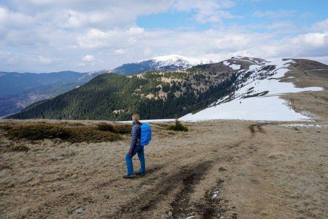 View near Romanescu Peak. The peak covered in snow in the background is Leaota Peak