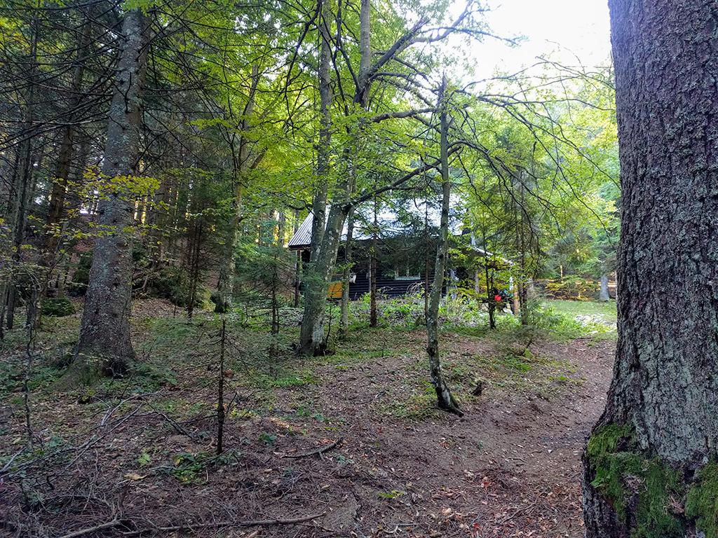 Coltii Morarului hunting hut